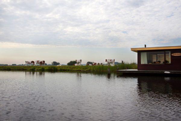 kaag resort-087